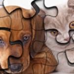 Cat vs Dog Puzzle