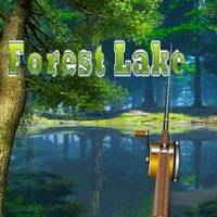 Forest Lake Fishing