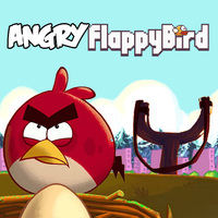 Angry Flappy Birds