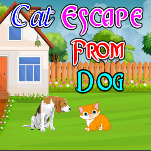 Cat Escape From Dog