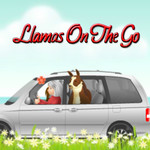 Llamas on the go