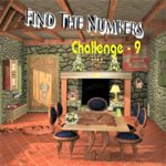 Find the Numbers: Challenge -9