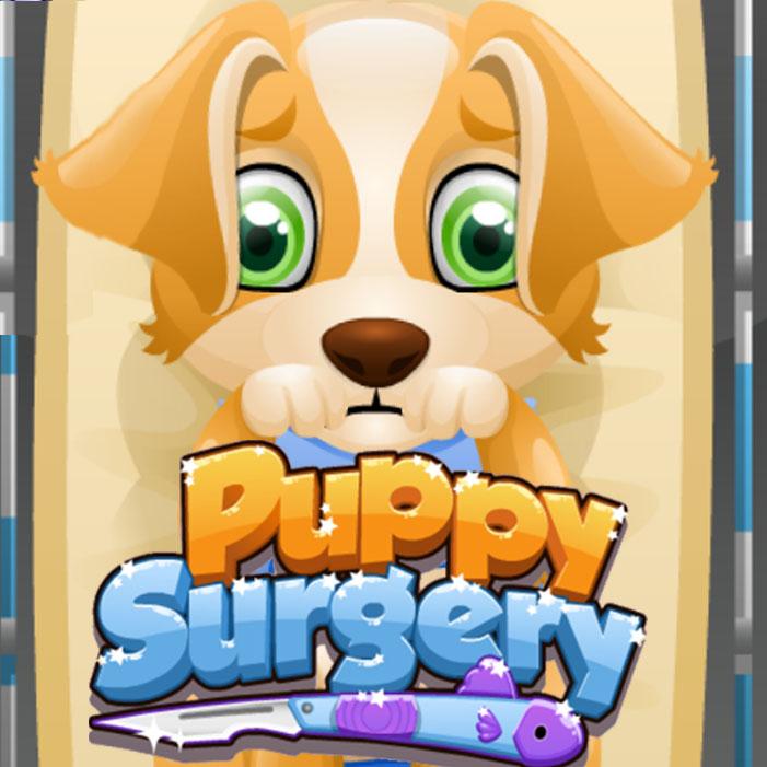 Puppy Surgery