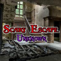Scary Escape Unknown