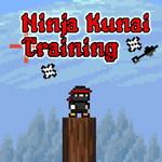 Ninja Kunai Training