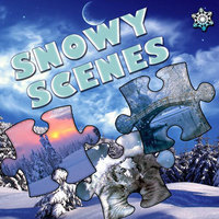 Jigsaw Puzzle Snowy Scenes
