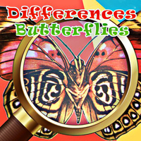 Differences Butterflies