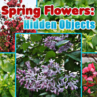 Spring Flowers Hidden Objects
